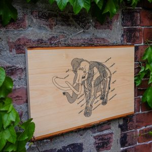 Anatomy of the Elephant | Screenprinted Wood Slab