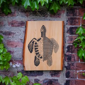 Anatomy of the Turtle | Screenprinted Wood Slab