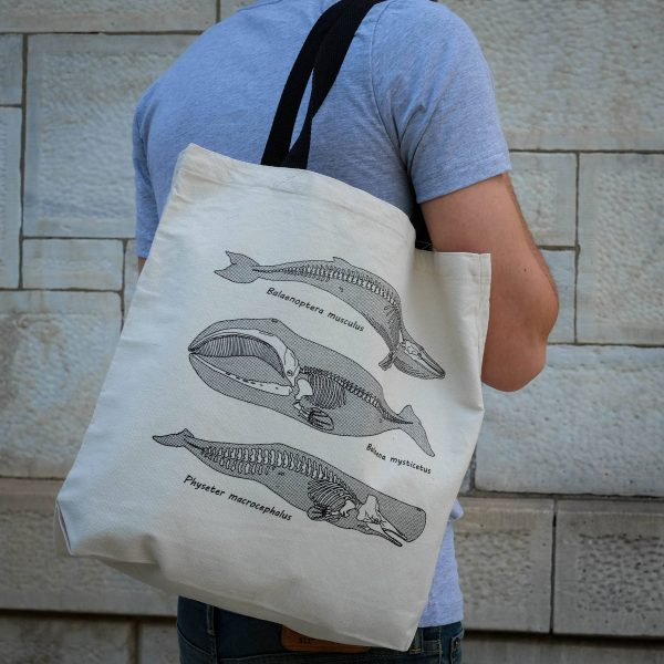 Anatomy of the Whale | Tote Bag
