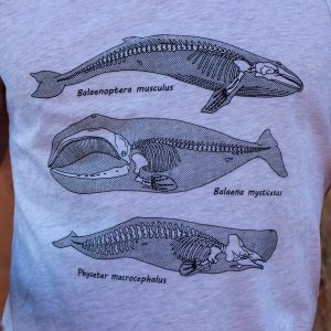 Anatomy of the Whale | Tank Top