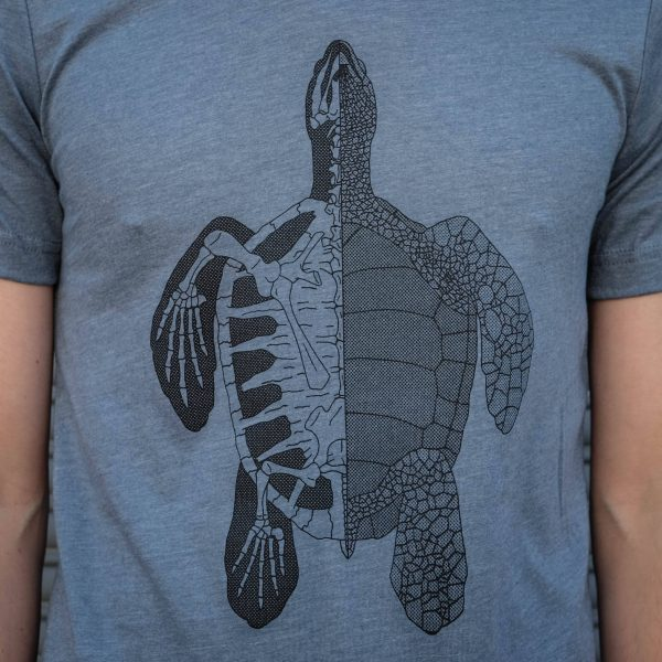 Anatomy of the Turtle   T-Shirt